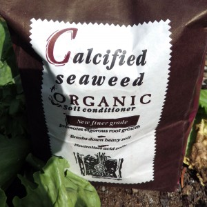 calicified-seaweed-organic-soil-conditioner
