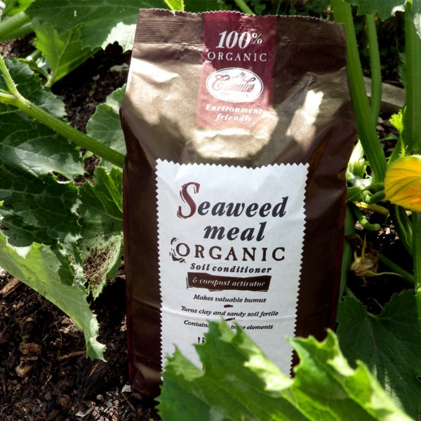 seaweed-meal-organic-soil-conditioner-and-compost-activator